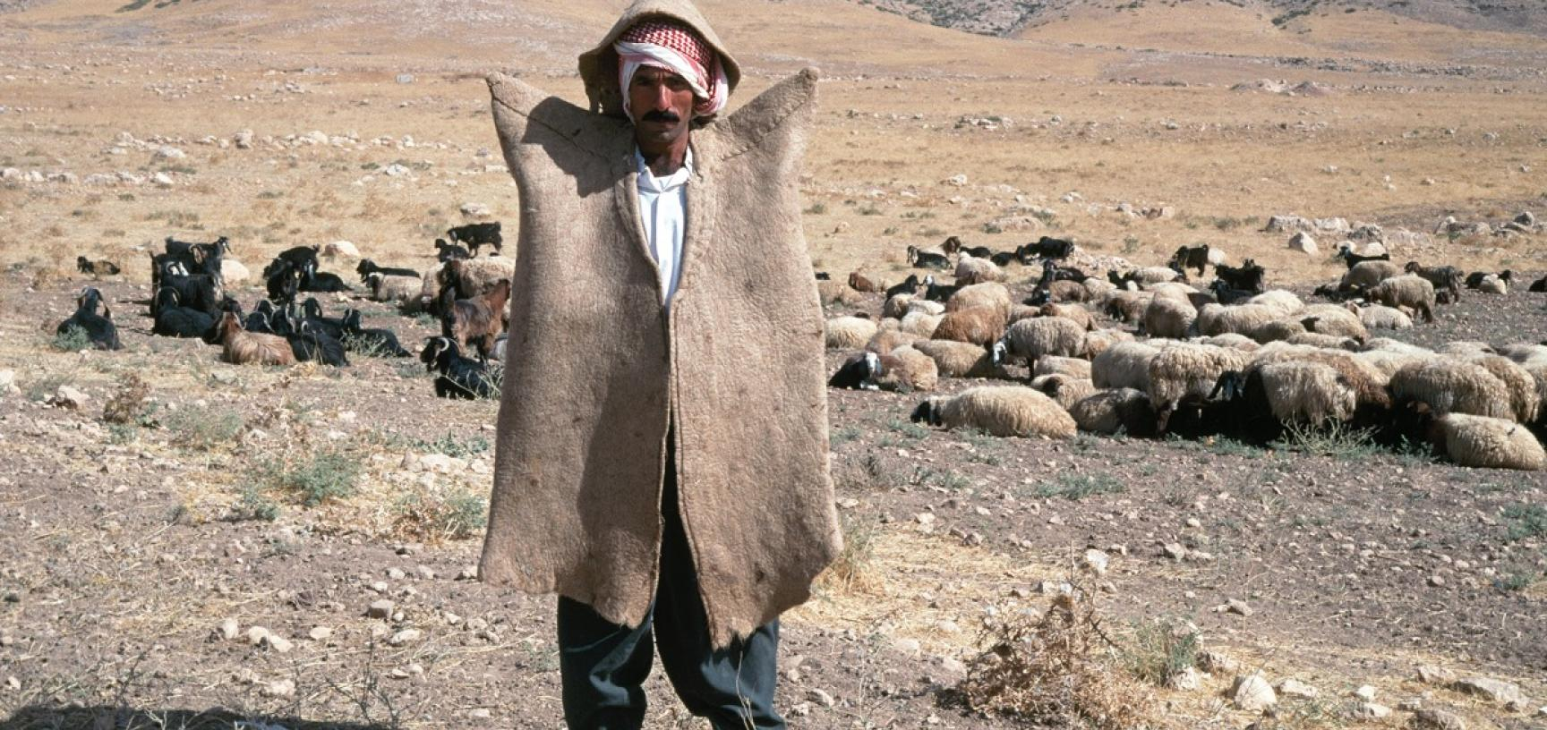 Portrait of a Kurdish shepherd wearing a wide-shouldered felt coat (kepenek). Photograph by Sheila Paine. Iraq. 1992. (Copyright Pitt Rivers Museum, University of Oxford. Accession Number: 2012.4.2106.1)