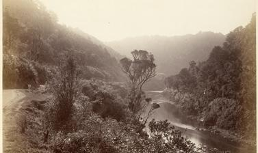View of the Manawatu Gorge. Photograph by Alfred Burton for the Burton Brothers studio (Dunedin). Manawatu River, North Island, New Zealand. Circa 1885.