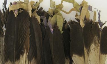 Silk ribbon on war bonnet (1954.8.140) before conservation