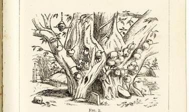 'Lhota Naga Village and Golgotha' (published caption). Page of the author's drawings reproduced in an article by R. G. Woodthorpe, 'Notes on the Wild Tribes Inhabiting the So-Called Naga Hills, on Our North-East Frontier of India'.