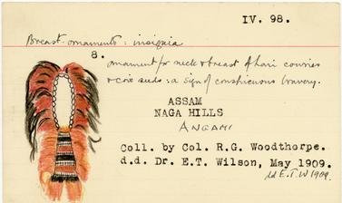 Catalogue index card for an Angami Naga neck and breast ornament: 'Ornament for neck & breast of hair[,] cowries & coix seeds: a sign of conspicuous bravery.' (Copyright Pitt Rivers Museum, University of Oxford. Accession Number: 1909.21.26)