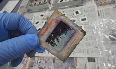 A 35 mm slide salvaged after the tsunami, still wet from being exposed to the water. (Copyright RD3 Project/Rikuzentakata City Museum)
