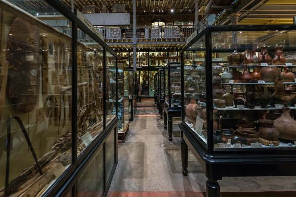 pitt rivers by ian wallman 0050