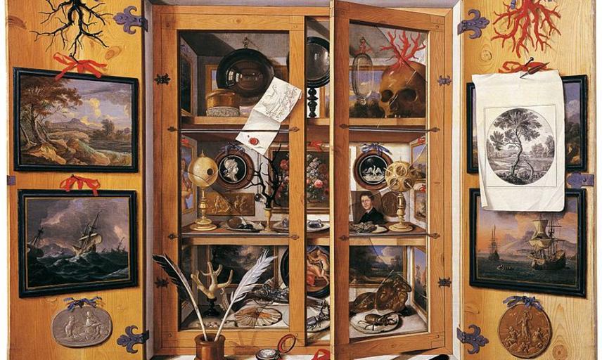 domenico remps  cabinet of curiosities