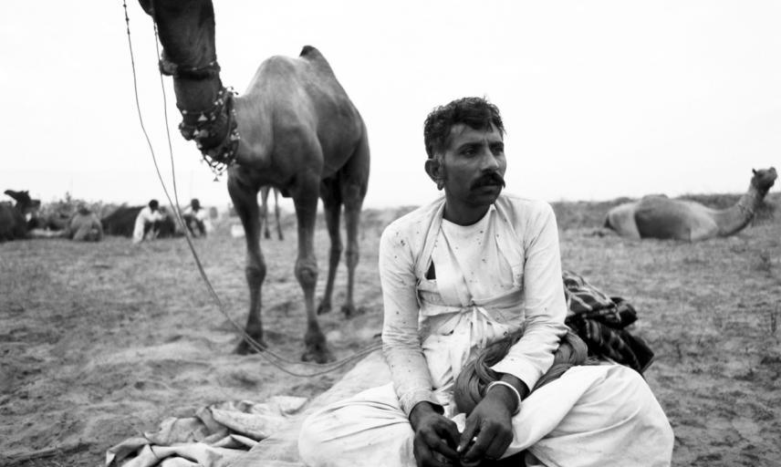 Camel herdsman. Rajasthan, India. Photograph by Roger Chapman. 2011. (Copyright Roger Chapman)